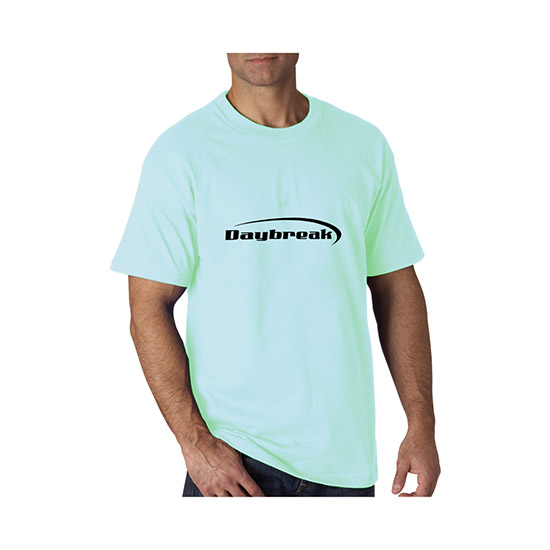 5317e653bb WE-801C Hanes Tagless T-Shirt - Darks